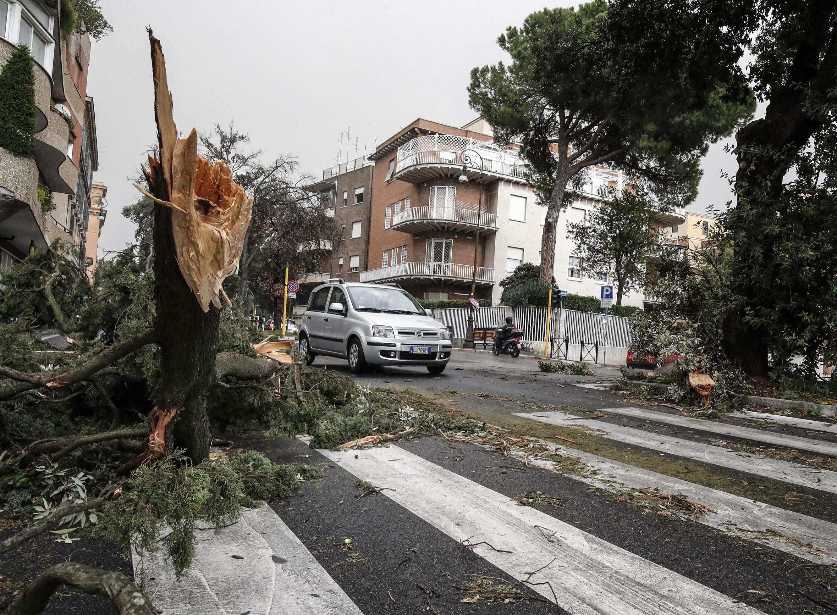 A tree lies on the ground after being torn down by heavy winds, in Rome, Monday, Oct. 29, 2018. The national Civil Protection Agency has issued red and orange alerts -- meaning possible