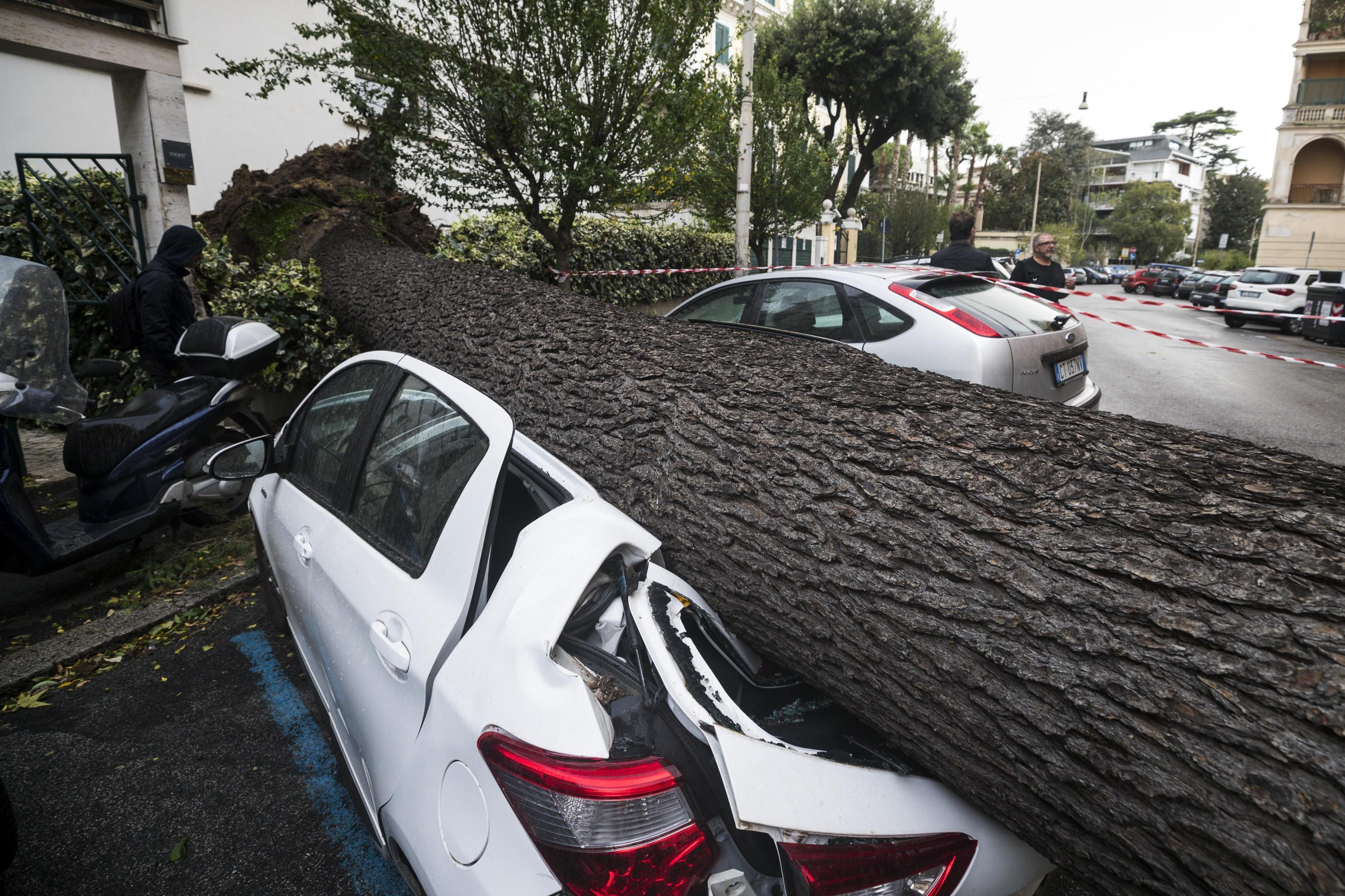 A car is crushed under a fallen tree after it was torn down by heavy winds, in Rome, Monday, Oct. 29, 2018. The national Civil Protection Agency has issued red and orange alerts -- meaning possible